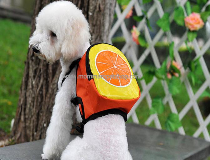 กระเป๋าเป้สุนัข กระเป๋าเป้แมว ลายส้ม