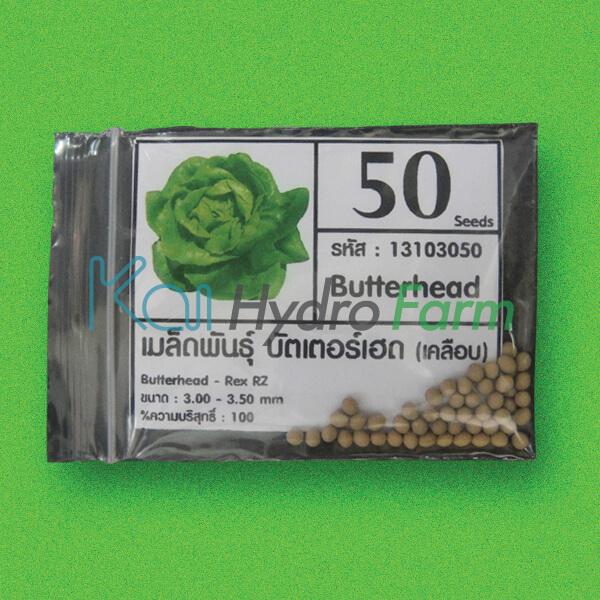 เมล็ดพันธุ์ Butter Head (เคลือบ) 50 เมล็ด