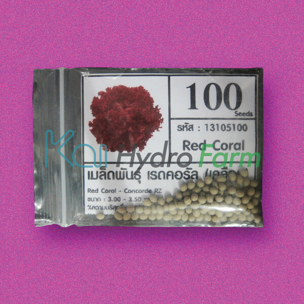 เมล็ดพันธุ์ Red Coral (เคลือบ) 100 เมล็ด