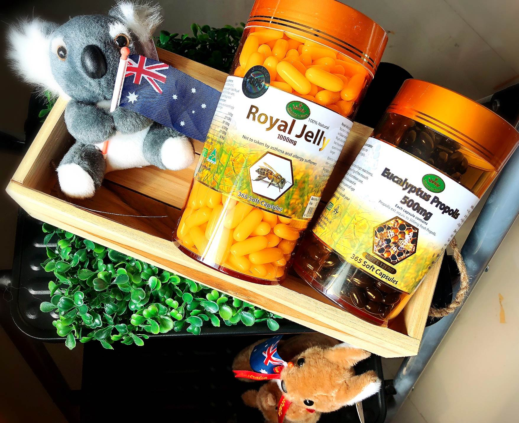 (ซื้อคู่ สุดคุ้ม) นมผึ้ง Nature king 365 เม็ด + propolis Nature king 365 เม็ด เสริมภูมิคุ้มกัน แก้ภูมิแพ้ รักษาสิวด้วยวิธีธรรมชาติ