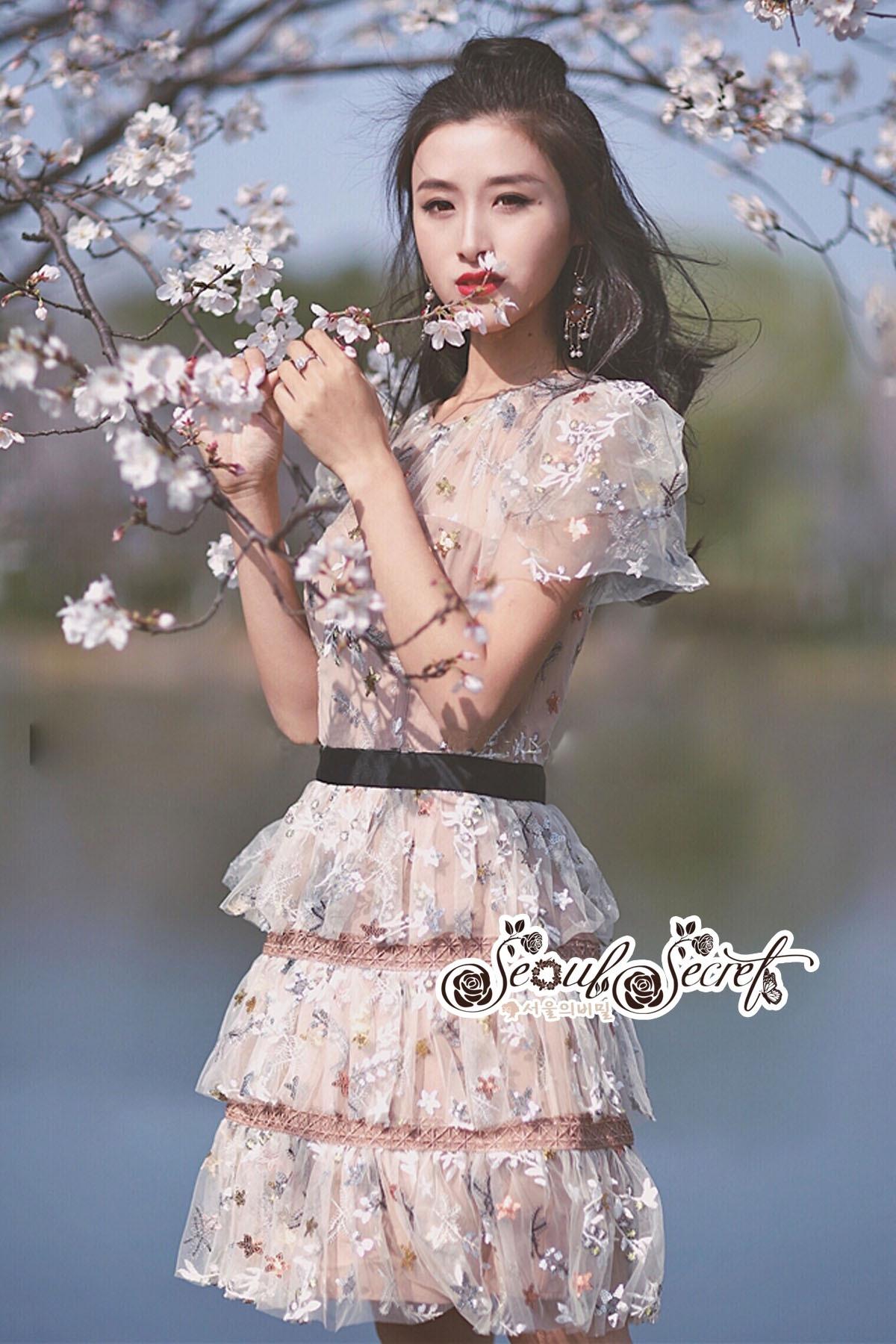 Mini Dress Ladies Flower Embroidery Korea Style