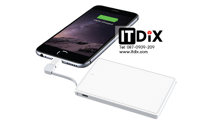 Power bank VEGER