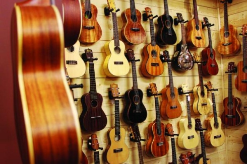 ร้านอูคูเลเล่ พิษณุโลก ขายเครื่องดนตรีอูคูเลเล่ ukulele อูคูเลเล่ราคาถูก ขายส่งอูคูเลเล่ Aloha Mahalo Mild Stagg Lanikai
